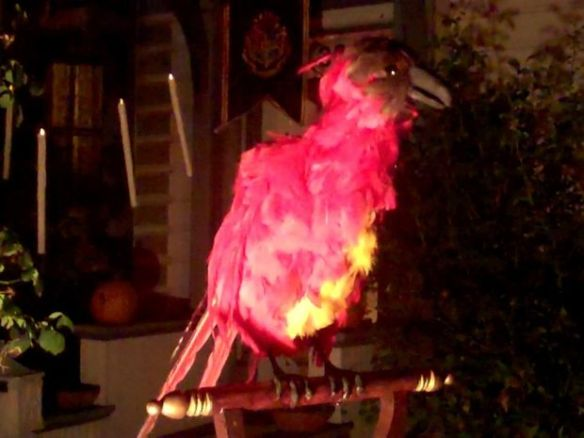 Animatronic Fawkes the Phoenix.  In the background, you can see some levitating candles.